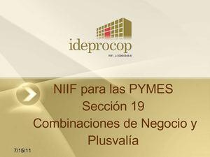 Calaméo - NIIF PYME Secc 19 CO