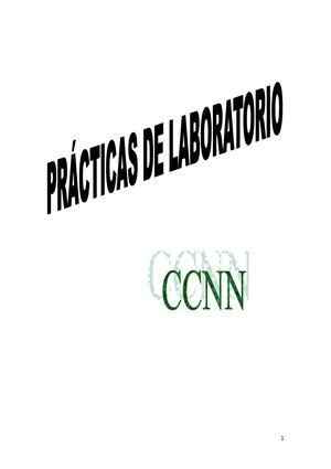 Calam 233 O Pr 193 Cticas De Laboratorio